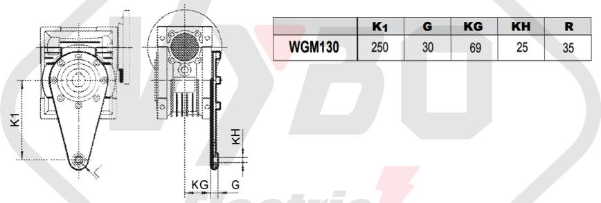 torzní rameno převodovka šneková převodovka WGM130