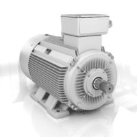 elektromotor 132kw 1LC315M04 B3