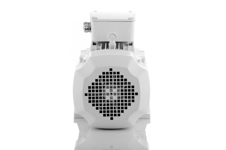 elektromotor 4,0kw 1AL160M-8
